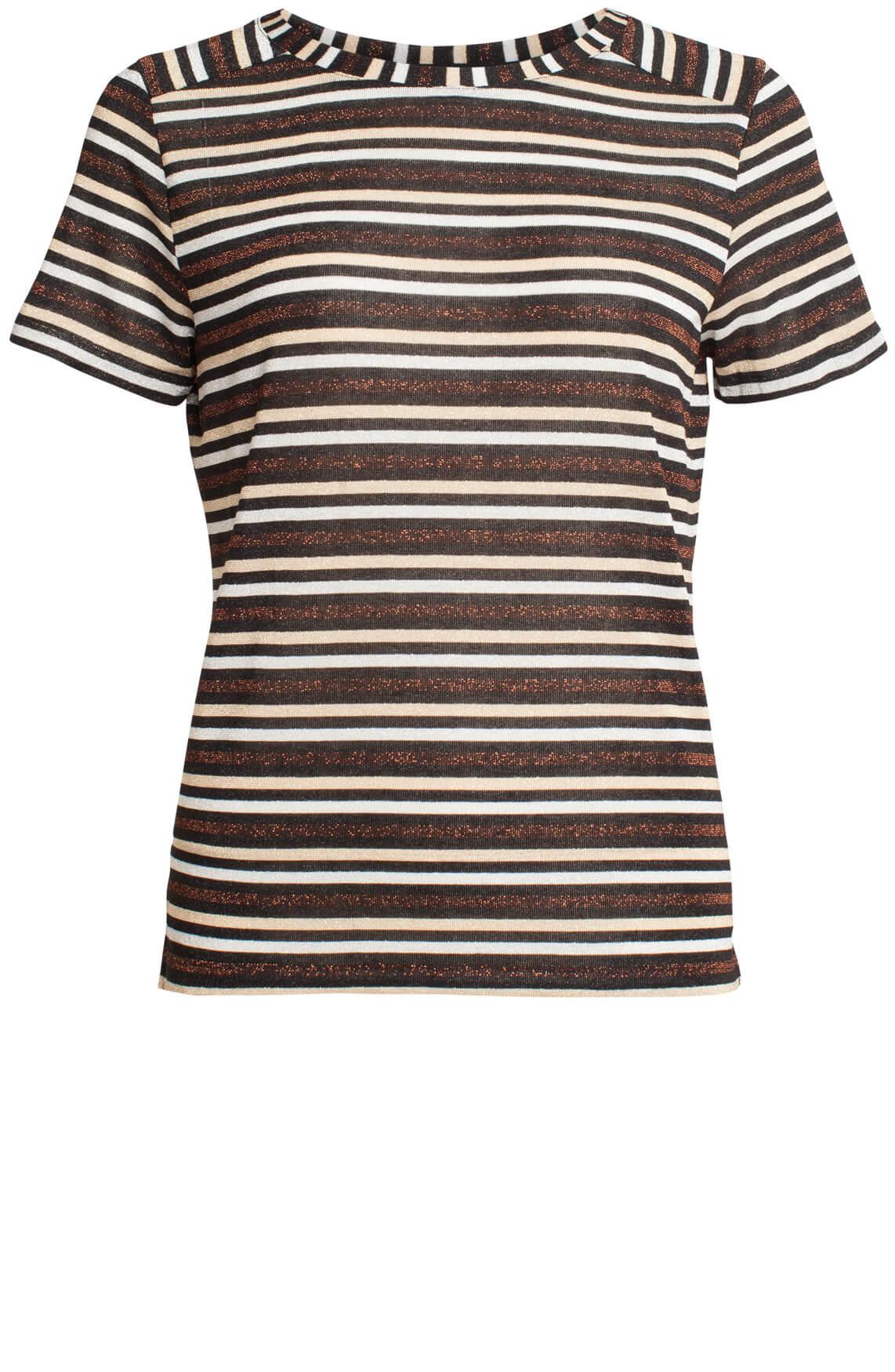 Anna Dames Gestreept glitter shirt Bruin