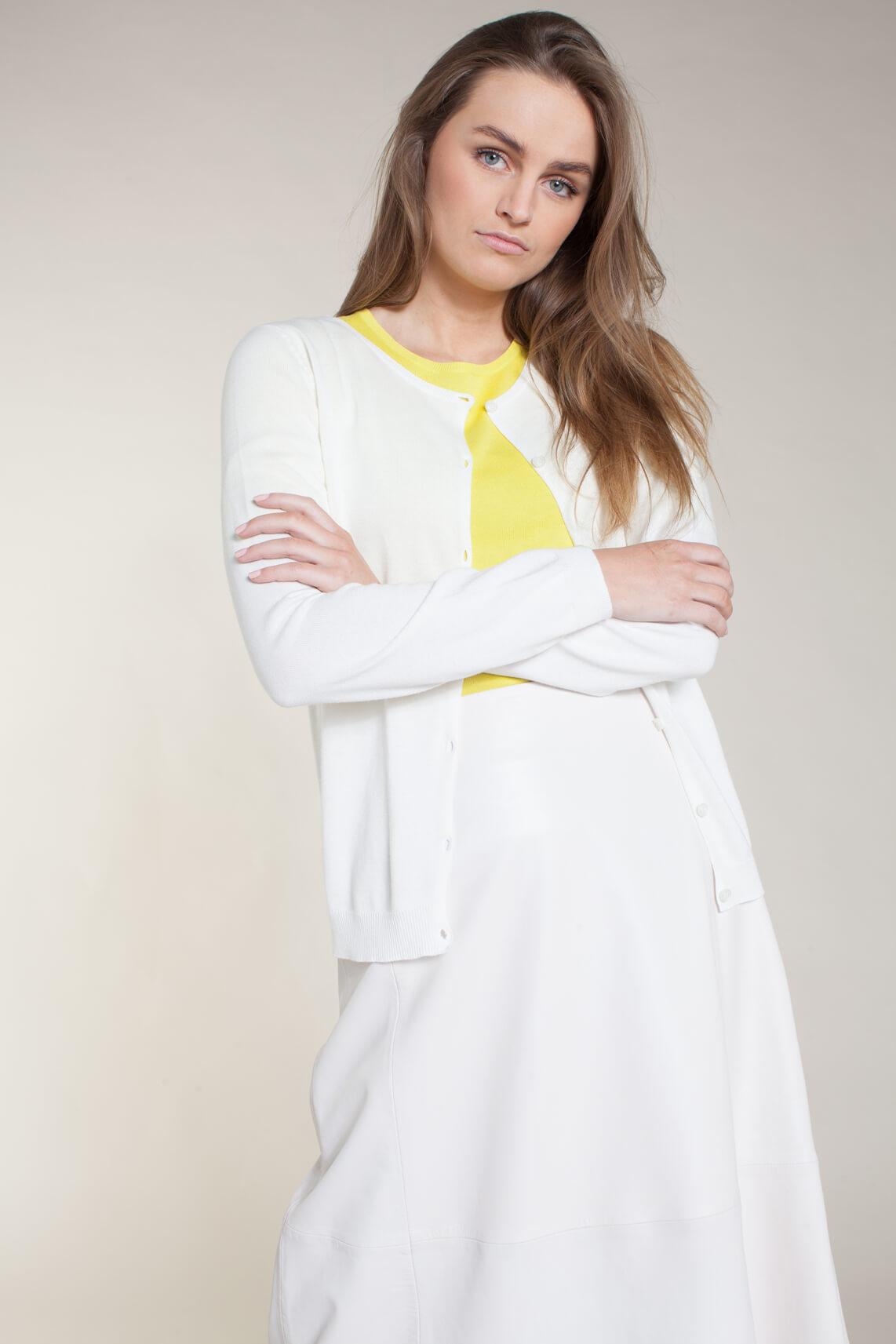 Anna Dames Fijngebreid vestje wit