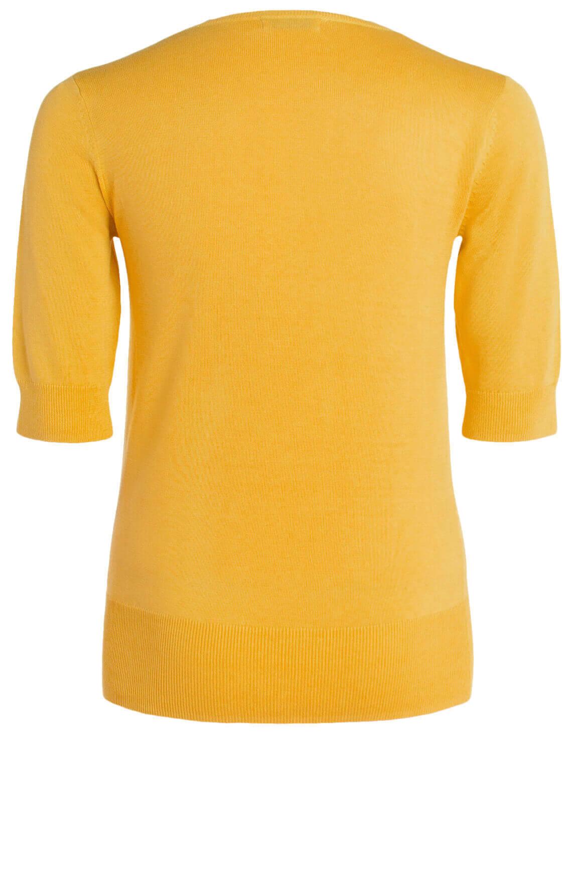 Anna Dames Fijngebreide pull geel