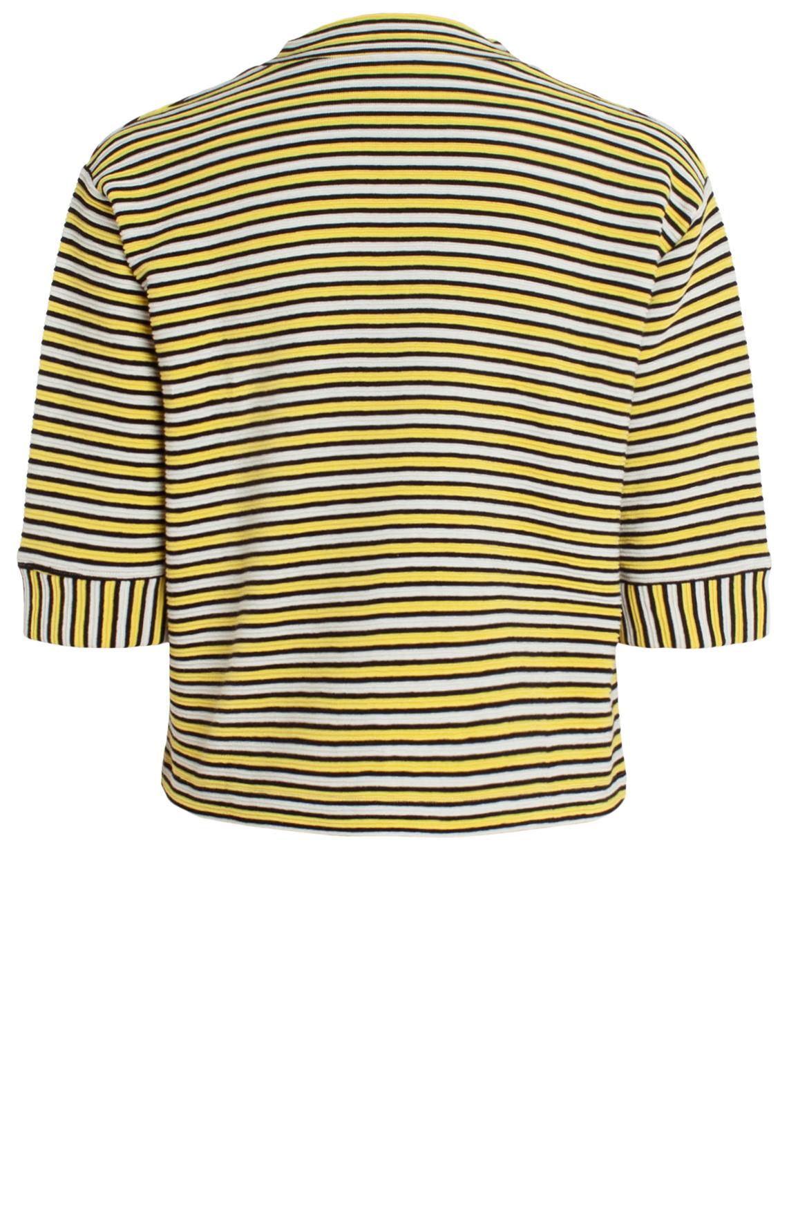 Anna Dames Gestreepte sweater geel