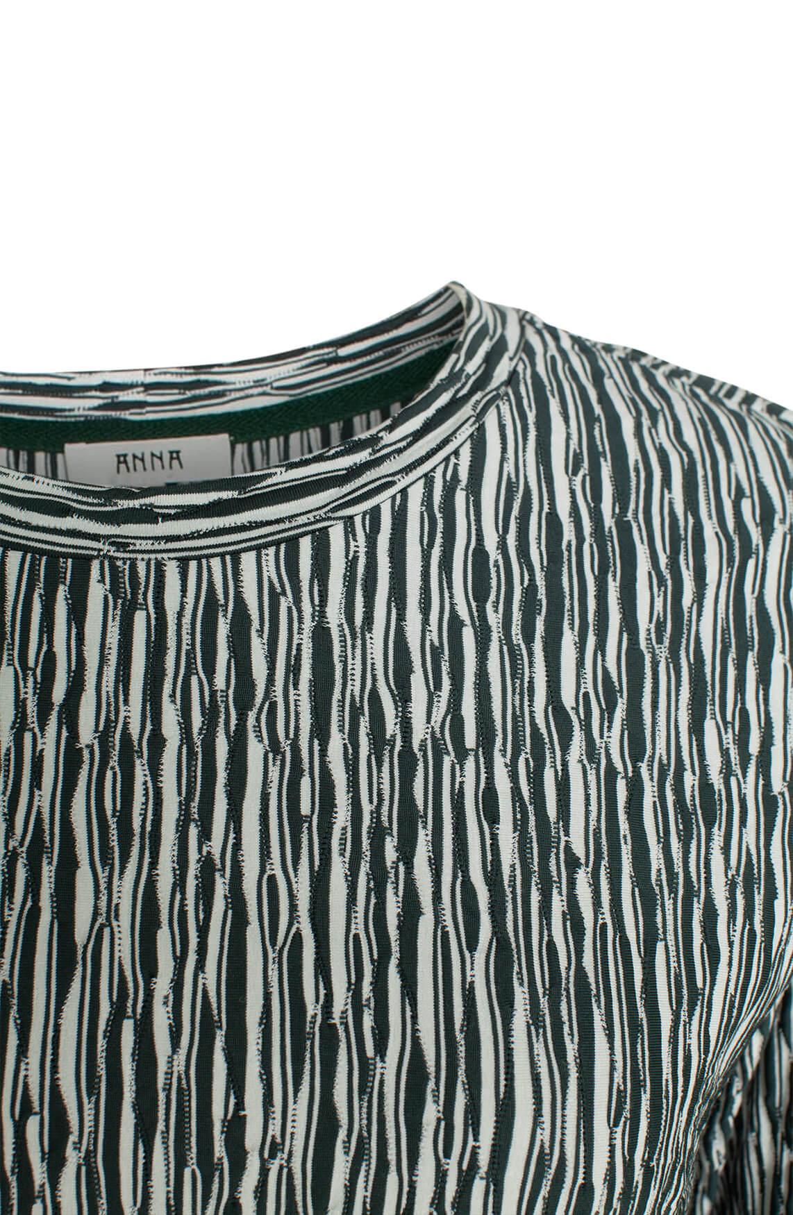 Anna Dames Reliëf shirt groen