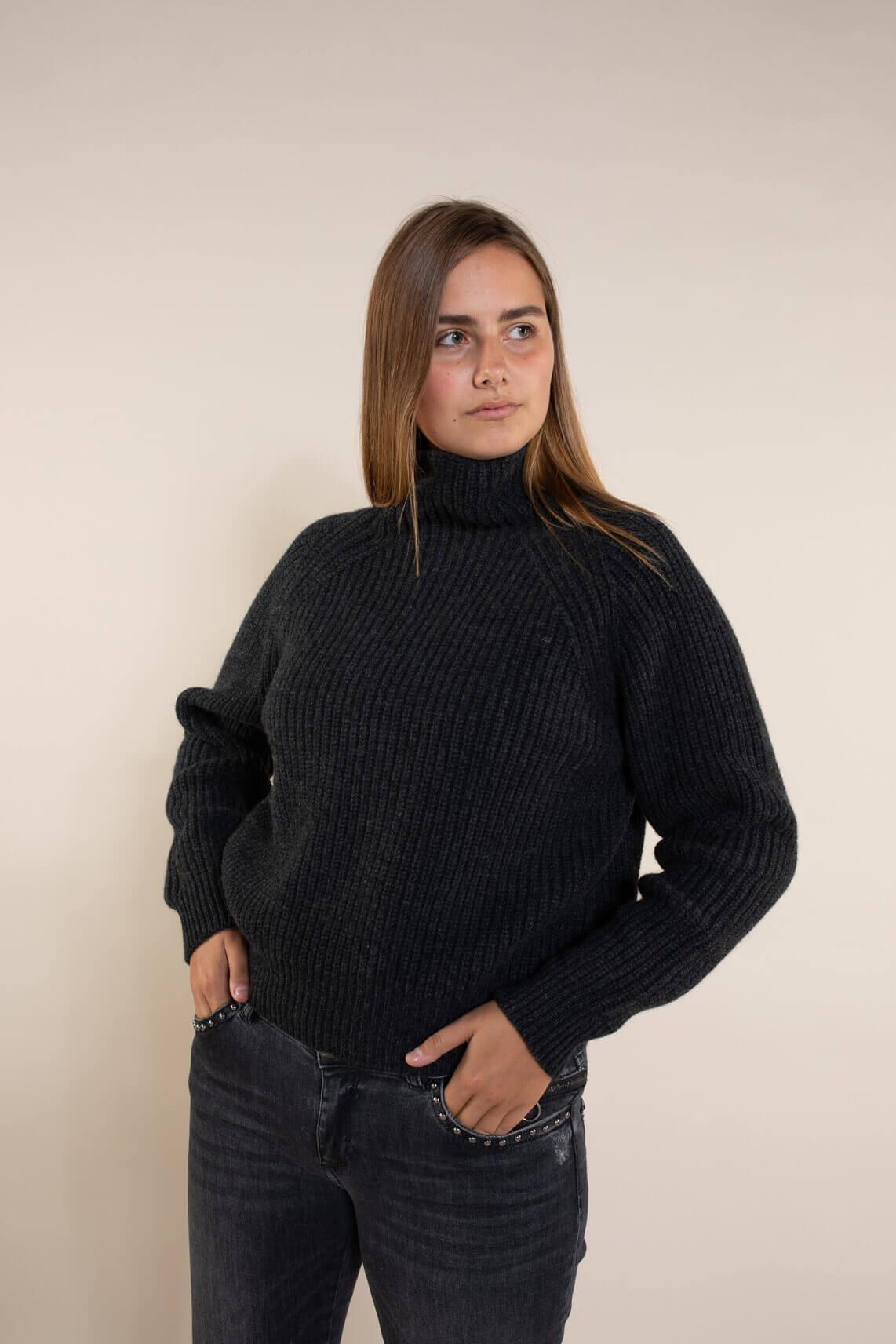 Drykorn Dames Cynara pullover Grijs