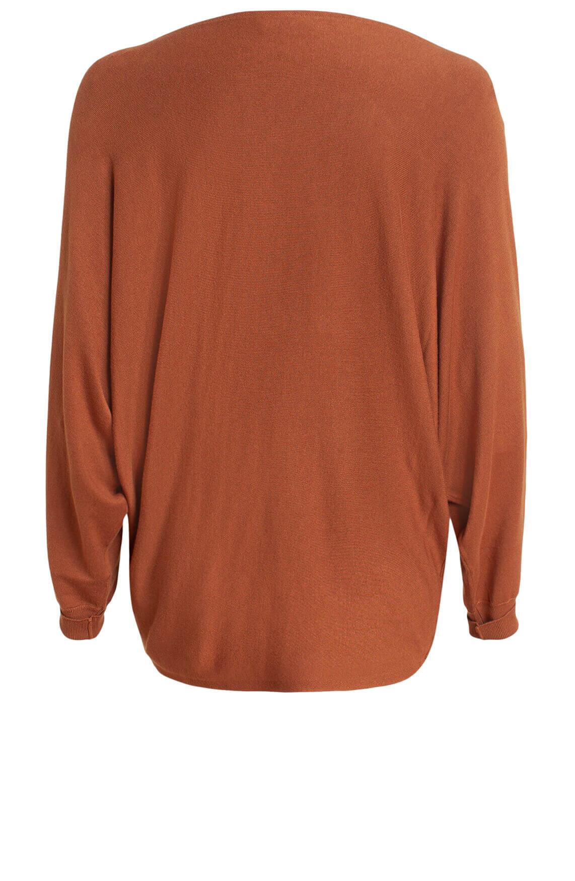 Anna Dames Oversized pullover Bruin