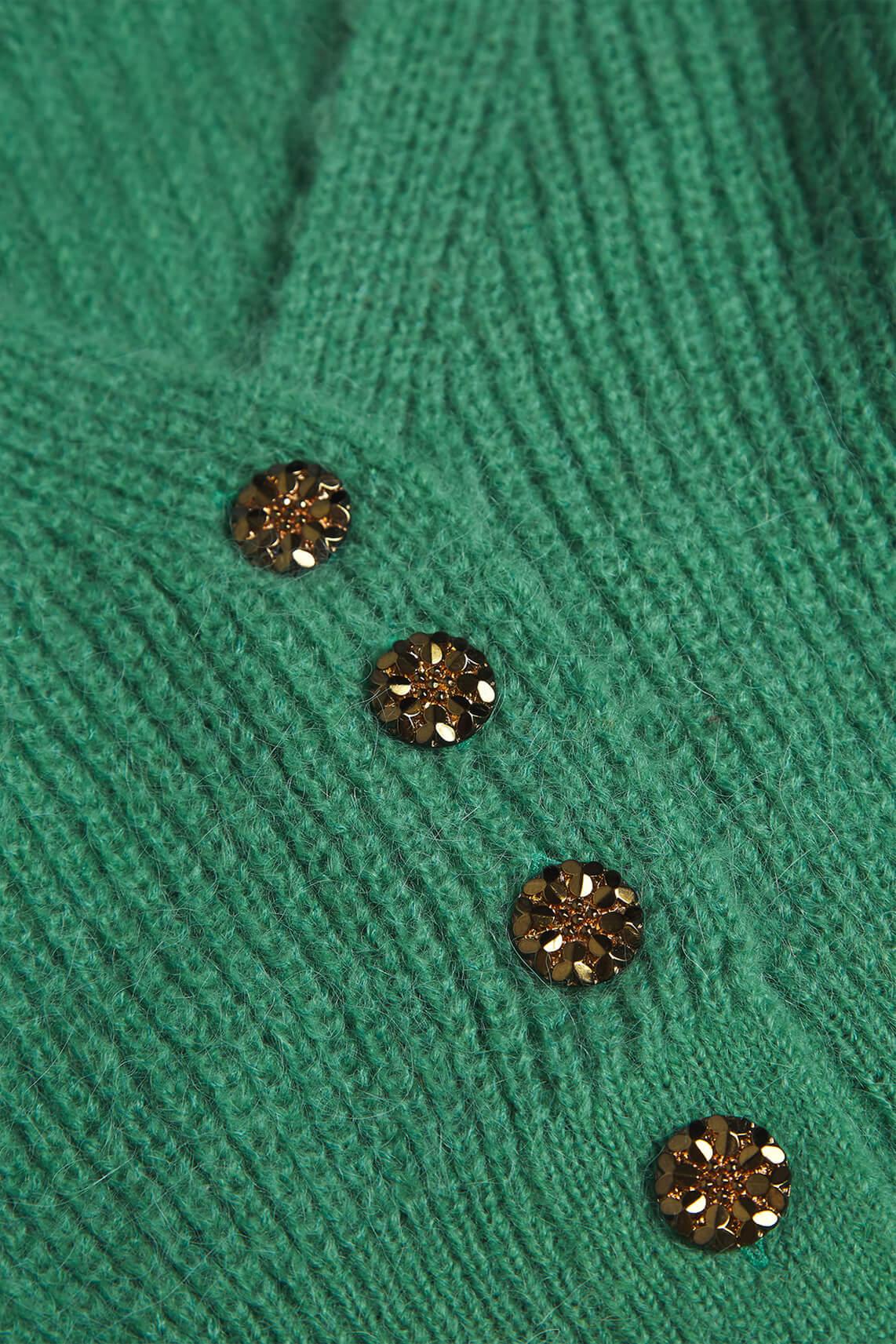 Fabienne Chapot Dames Starry cardigan groen