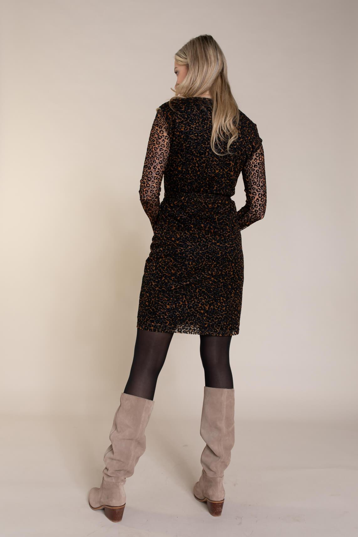 Anna Dames Panterprint mesh jurk zwart
