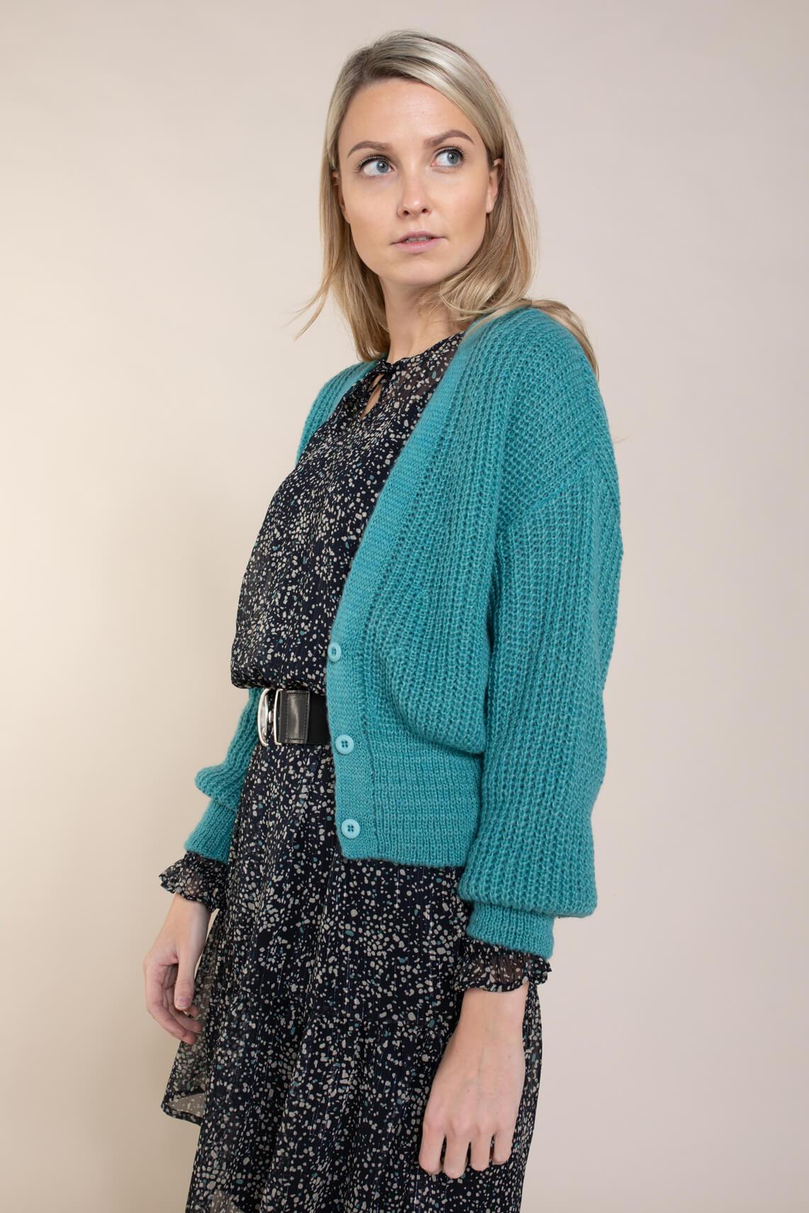 Anna Dames Losgebreid vest Blauw