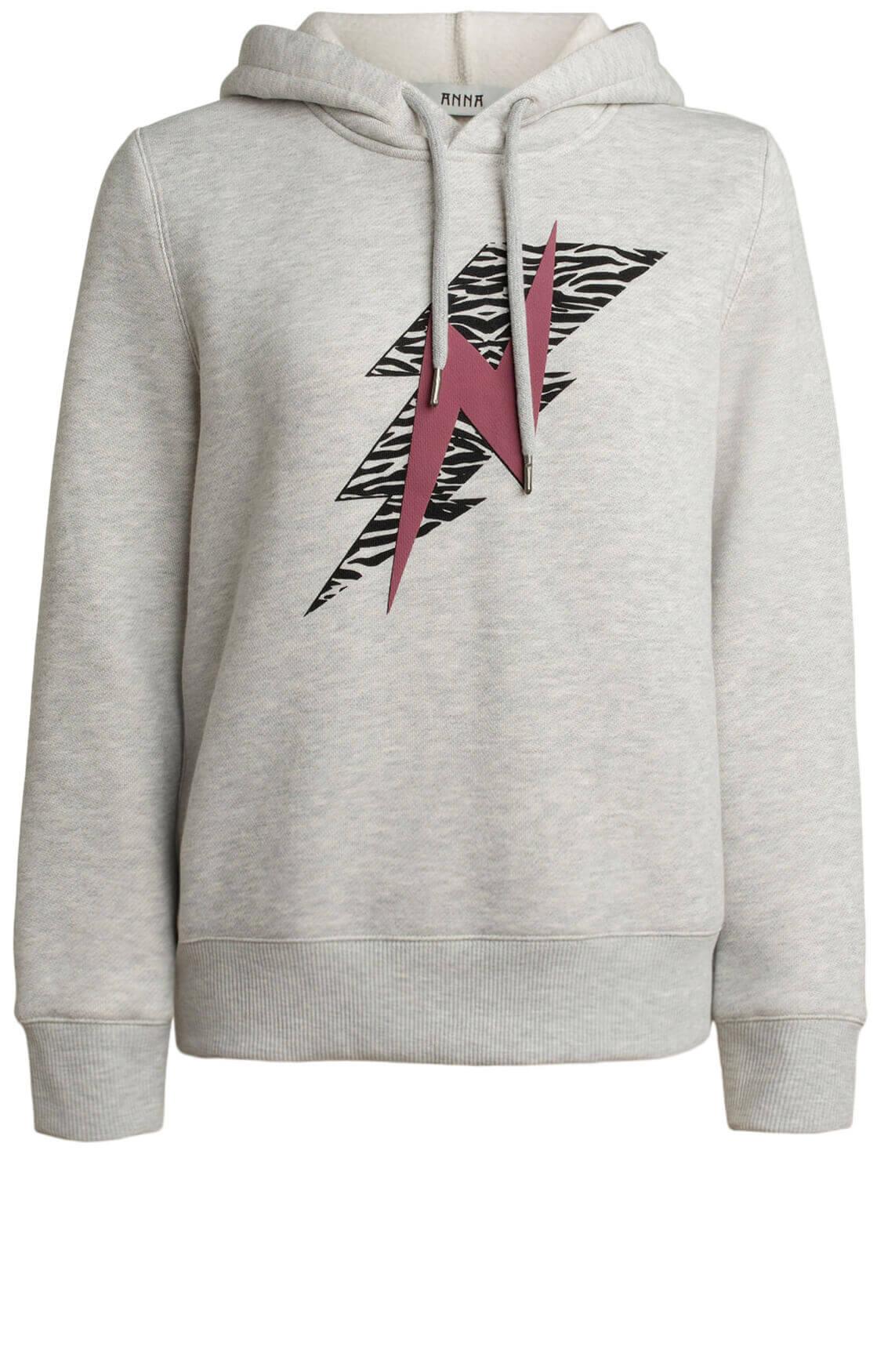 Anna Dames Bliksem sweater Grijs