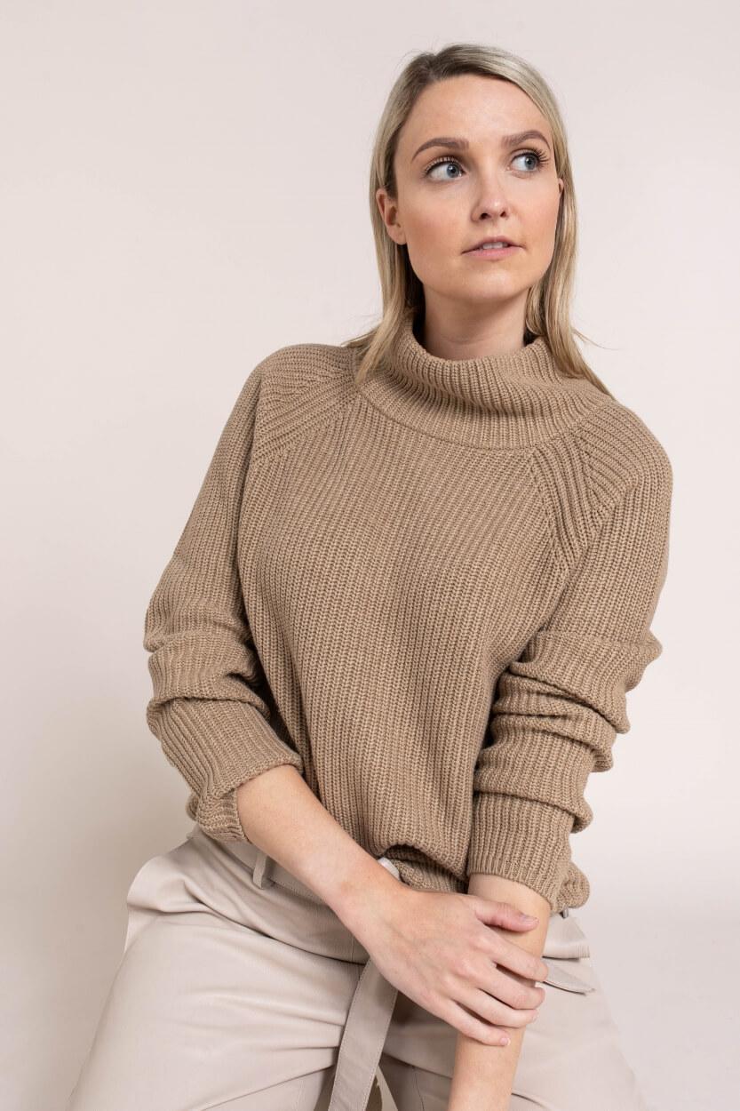 Anna Dames Gebreide trui met hoge kraag Bruin