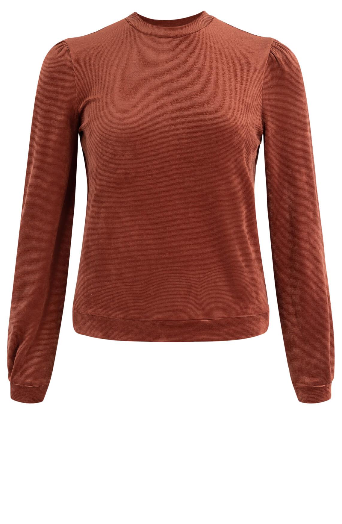 Anna Dames Velours sweater Bruin