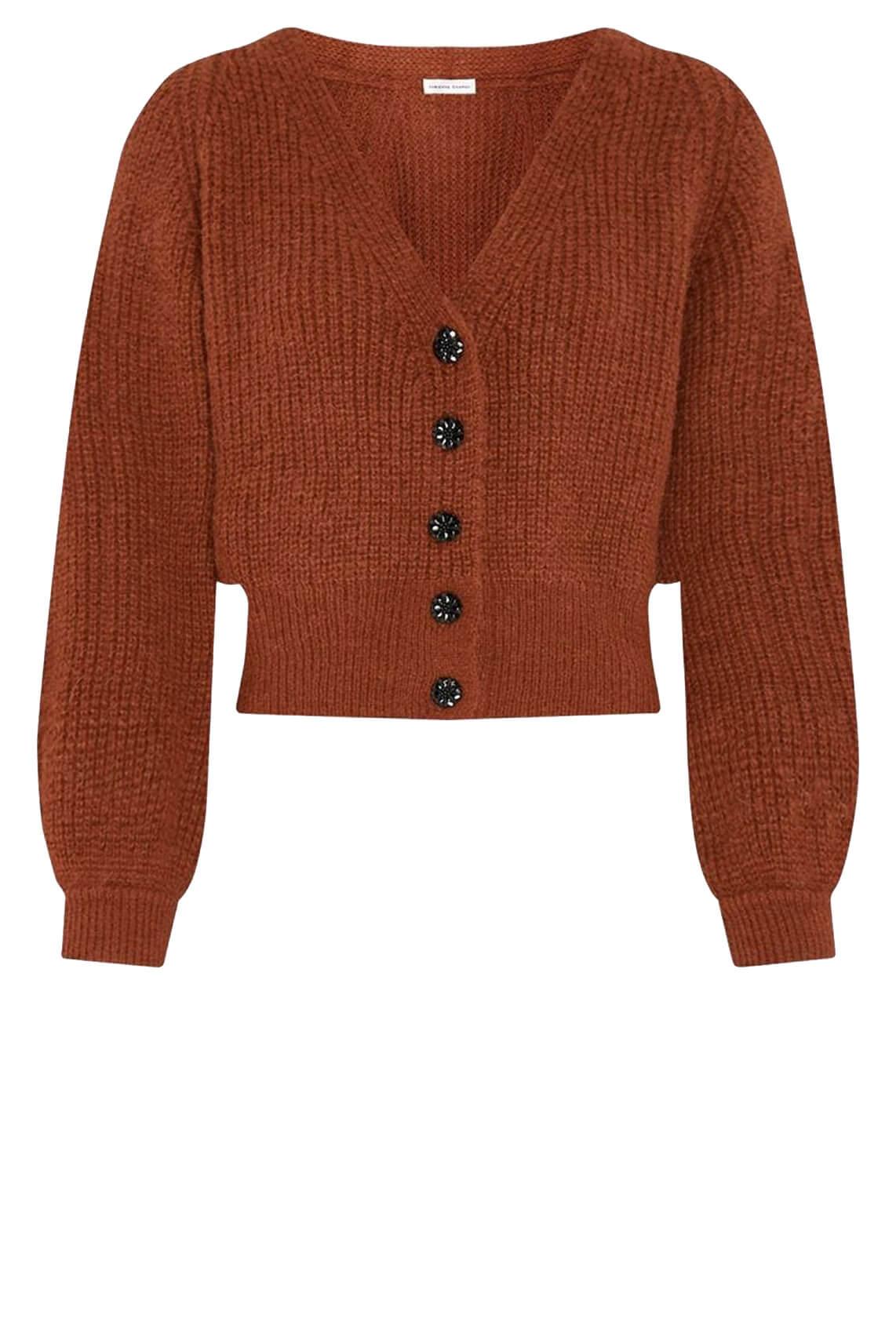 Fabienne Chapot Dames Starry vest Bruin