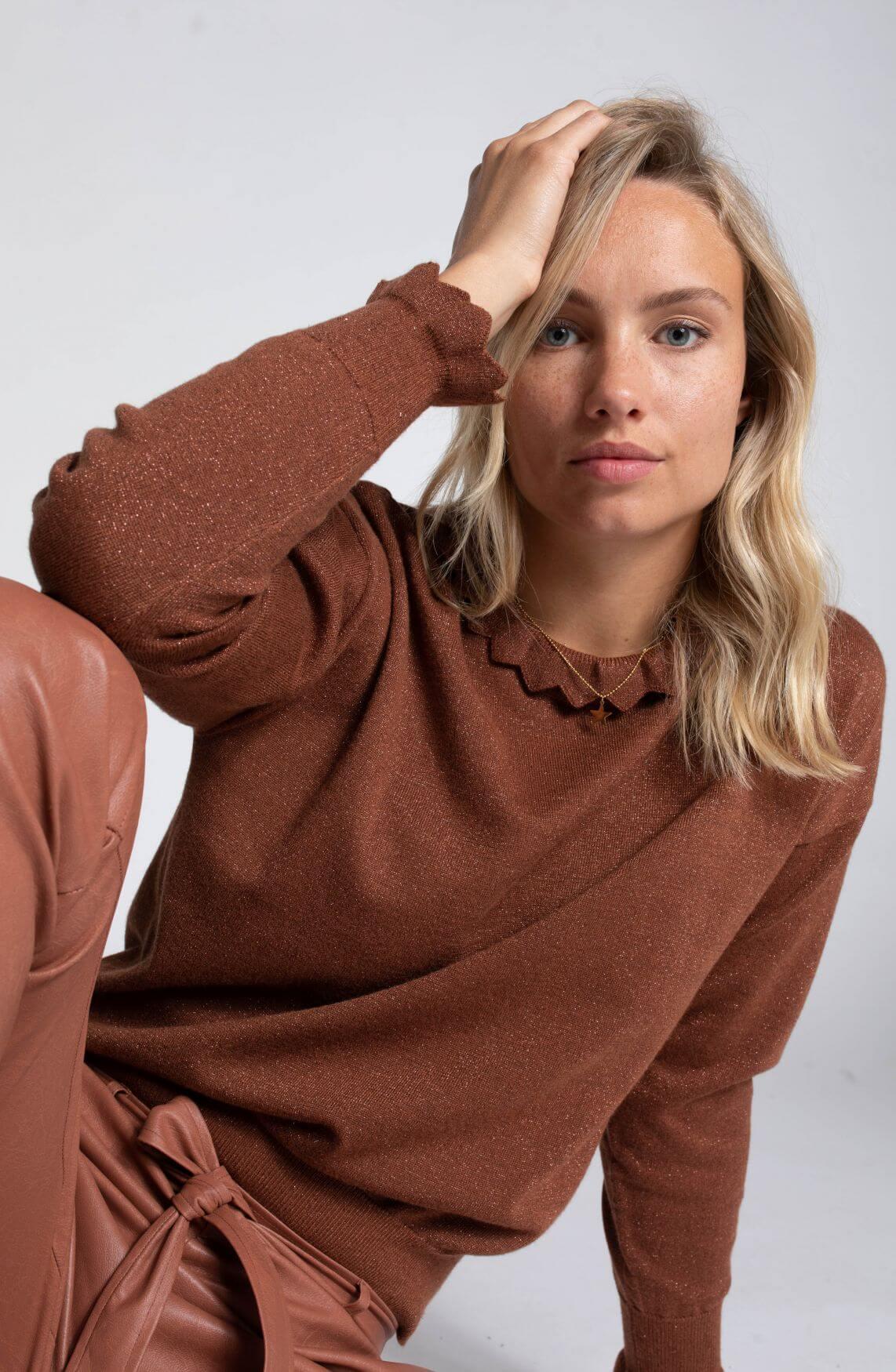 Anna Dames Pullover met lurex Bruin